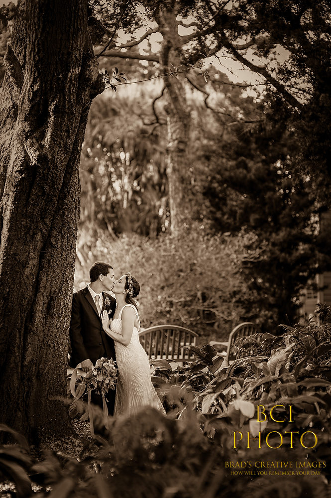 Fun Wedding at Heathcote Botanical Gardens with our Staff Photographers
